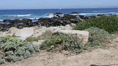Pacific Grove Point Pinos Stock Footage