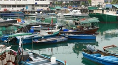 Many boats on emerald waters, fisherman and anxious dog Stock Footage