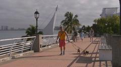 The Malecon (Broadwalk) in Puerto Vallarta, Mexico Stock Footage