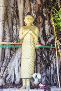 Standing buddha statue Kuvituskuvat