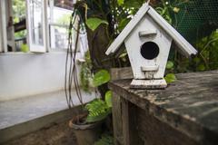 Decorative bird cage Stock Photos