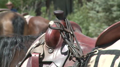 Saddle on horse Stock Footage