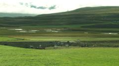 Icelandic Horses- ICELAND Stock Footage