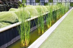 The design of belgium garden in rajapruek royal park Stock Photos