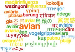 Stock Illustration of Avian multilanguage wordcloud background concept