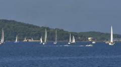 Time lapse many sail and motor boats on bay at Toulon France - HD P 0719 Stock Footage