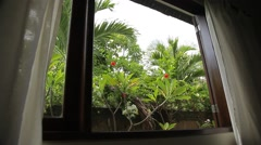 Tropical garden through the window. Curtains and plants swinging in strong wind. - stock footage