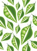 green peas seamless pattern - stock illustration