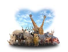group of africa animals - stock photo
