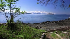 Trail leading to the beach on Orcas Island - stock footage
