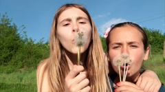 Smiling Girls Blowing Dandelion, Moments Of Happiness In Nature Stock Footage