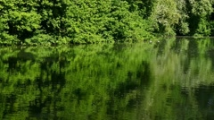 Lake in green nature Stock Footage