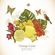 Vintage Greeting Card Tropical Fruit, Flowers, Butterfly and Birds - stock illustration