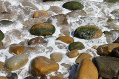 Slimy rocks on a good summer day  Stock Photos