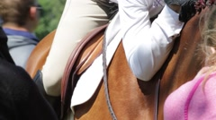 Close Up of English Rider Hugging Her Horse Stock Footage