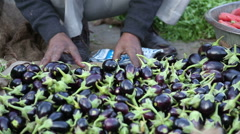 Vendor filling his stand at market in Jodhpur with baby eggplants. - stock footage
