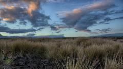 Dynamic Grasslands Morning Time Lapse, Waikoloa Ranch Land, Big Island, Hawaii Stock Footage