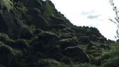 Rocks and Moss in ICELAND  Stock Footage