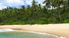 Sea waves on tropical beach and coconut palms Stock Footage