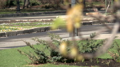 Spring park landscape - flowerbed, paths and bush - stock footage