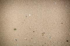 Closeup  sand and some shell - stock photo