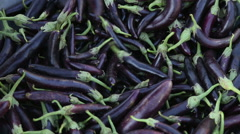 Person picking purple vegetables from a pile. Stock Footage