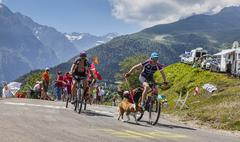 Amateur Cyclists in Pyrenees Mountains - Tour de France 2013 - stock photo