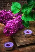Bush may lilac and lighted candle - stock photo