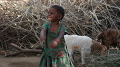 Portrait of beautiful Indian girl standing by sheep in back yard. - stock footage
