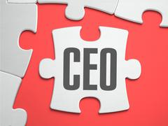CEO - Puzzle on the Place of Missing Pieces Piirros