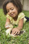 A girl petting a small duckling. - stock photo
