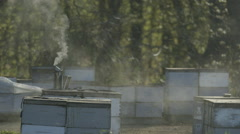 Smoke being emitted from bee smoker in bee farm Stock Footage
