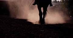 Beautiful girl  riding a horse against sun 5 Stock Footage