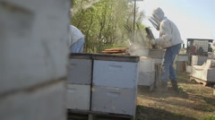 Beekeepers checking honeycomb frames in bee farm Stock Footage