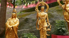 Standing golden buddha statues, on the way to temple on hill Stock Footage