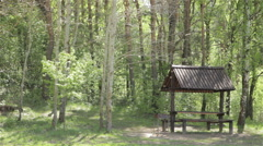 many gnats in a forest with gazebo - stock footage