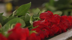 Close-up of bunch of red roses Stock Footage