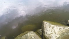 Calm water of  Vistula river near Warsaw, Poland Stock Footage