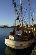 Fishing trawler Viaduct Harbour Central Business District City of Auckland Ne Stock Photos