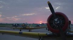 North American T-6 Texan warbirds on Wittman Regional Airport Stock Footage
