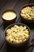 Cooked Tortellini with Parsley Cream Sauce - stock photo