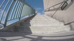 Labrador Retriever Dog Walking Down Stairs Stock Footage