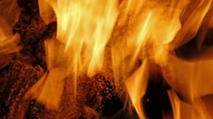 Camp fire at night close up 4k Stock Footage
