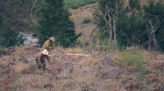 Farmers in seedtime Stock Footage