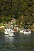 Boats moored at Opua Harbour, south of Paihia, Bay of Islands, North Island N Stock Photos