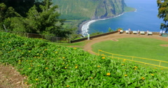 """Sacred Valley of the Kings """"Waipio Valley"""" Stock Footage"""