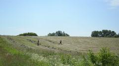 Men half undressed manual rake hay in rural agriculture field Stock Footage