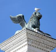 winged lion statue in piazza san marco in Venice and Seagull in head - stock photo