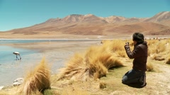 Tourist taking picture of a Lagoon with flamingos in Bolivia Stock Footage