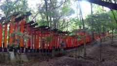 Pan right - Japanese people and tourists walk Fushimi Inari Shrine in Kyoto. Stock Footage